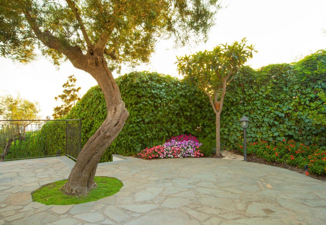 garden with flowers, villa chez piè, vacation villa massa lubrense, italy