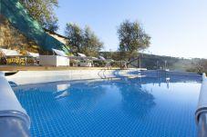 pool and solarium at morning, villa gradoni, vacation villa sorrento, italy