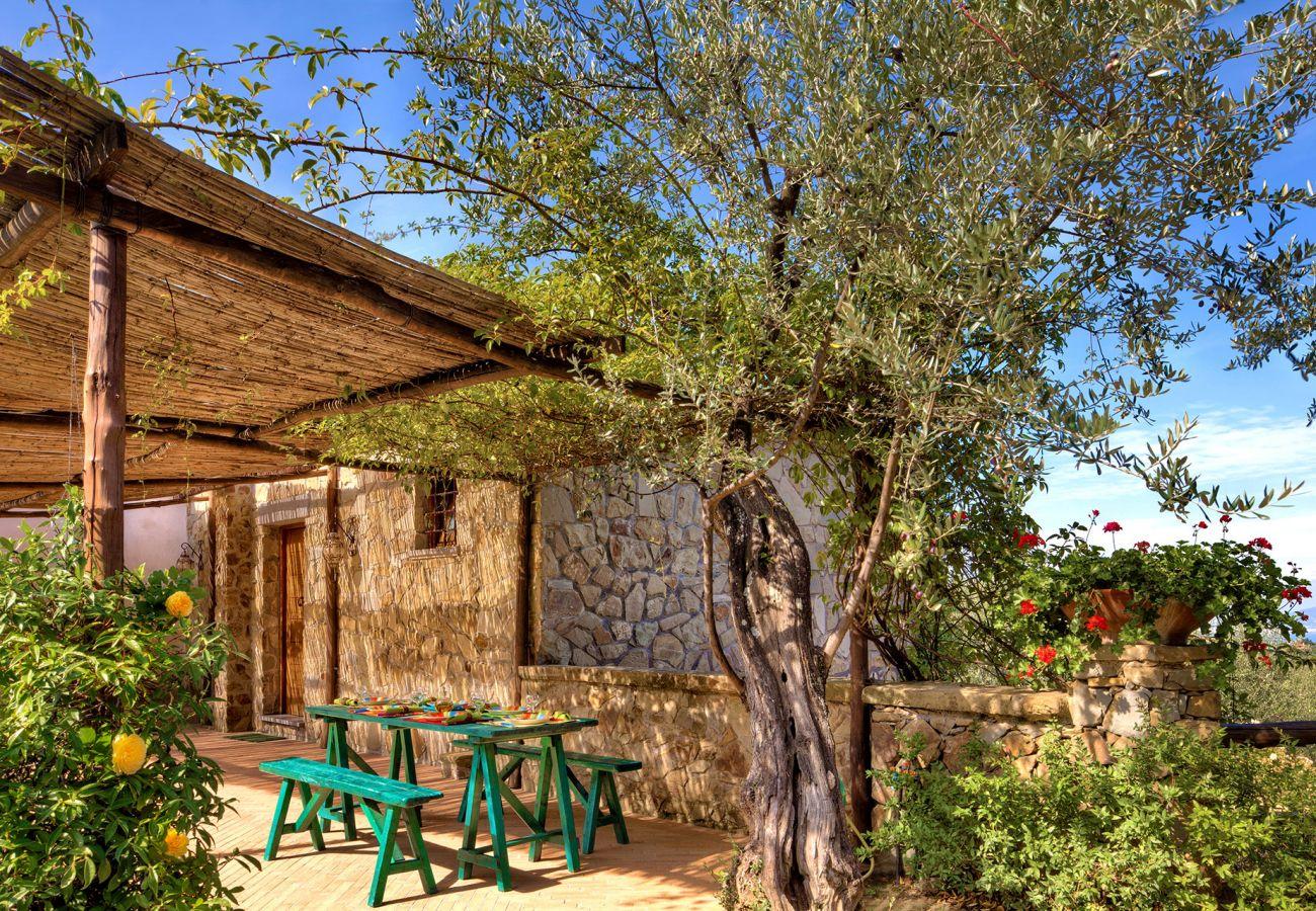 primula apartment in a farmhouse, casale la torre, holiday apartments near sorrento, massa lubrense, italy