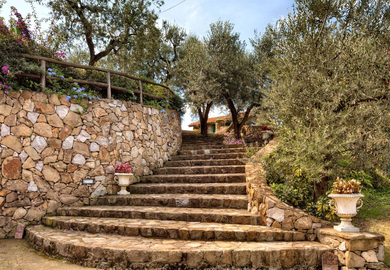 stone stairs in the garden, casale la torre, holiday apartments near sorrento, massa lubrense, italy