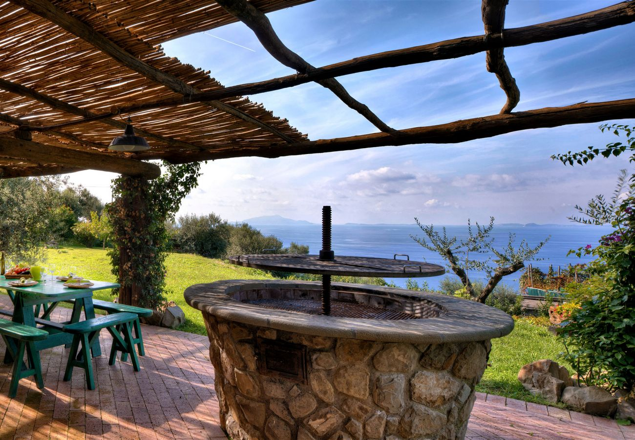 bbq and garden with view, casale la torre, holiday apartments near sorrento, massa lubrense, italy