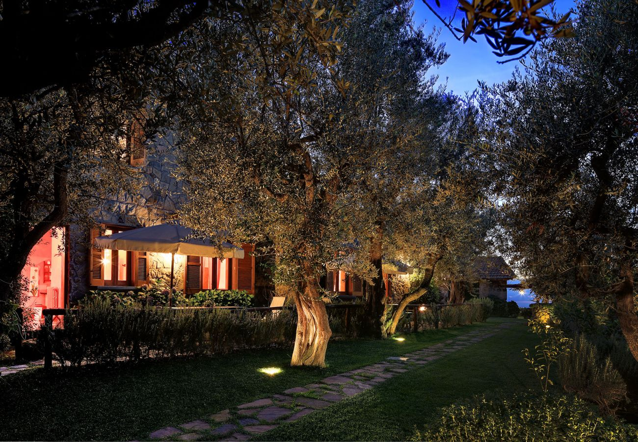 outer patio in the evening, olive trees, casale la torre, holiday apartments near sorrento, massa lubrense, italy