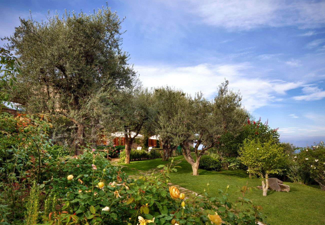 wide garden and flowers, casale la torre, holiday apartments near sorrento, massa lubrense, italy