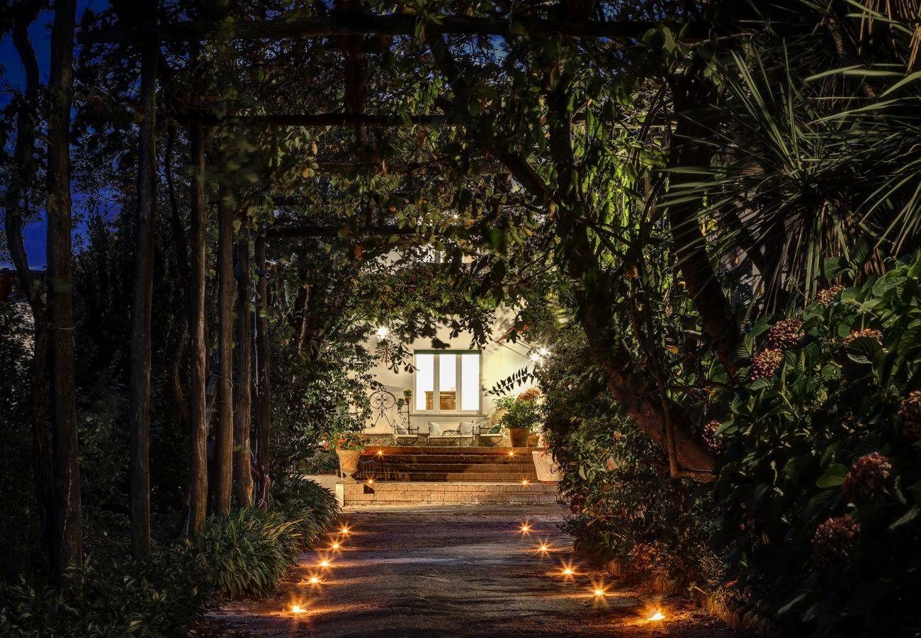illuminated garden at night, vacation villa la casa bianca, massa lubrense, italy