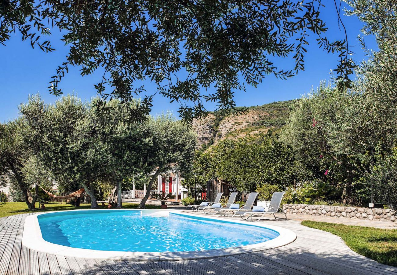 pool, solarium and garden, sunny day, vacation villa mamma mia