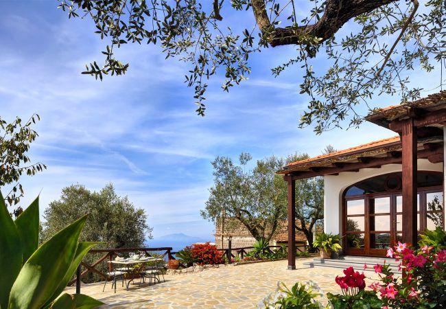 Villa in Massa Lubrense - Tulipano