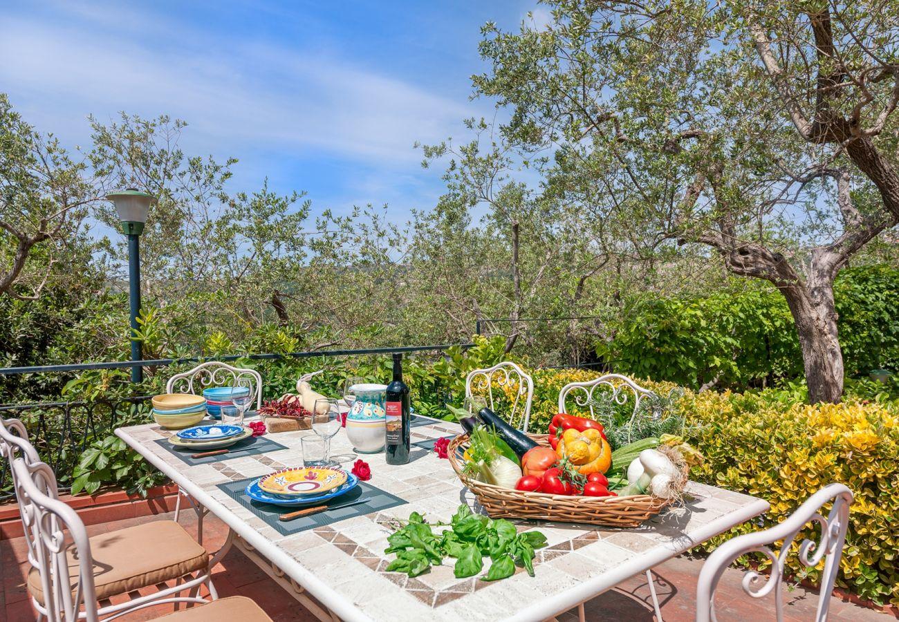 laid table, garden produce, sunny day, villa alfonsina, massa lubrense, italy