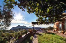 garden with gorgeous view of s.costanzo mountain, vacation villa due golfi, massa lubrense, italy