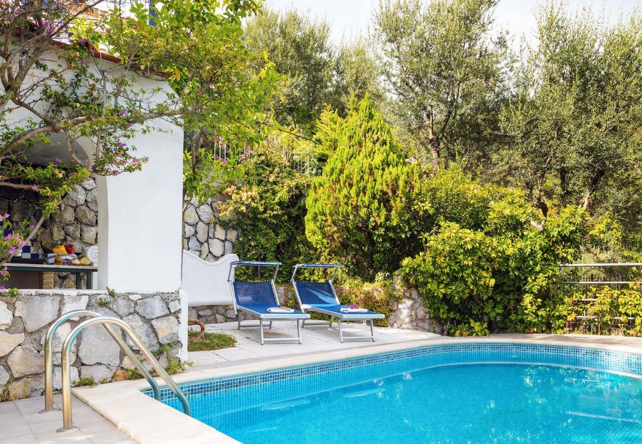 private pool surrounded by garden, villa marinella, nerano, italy