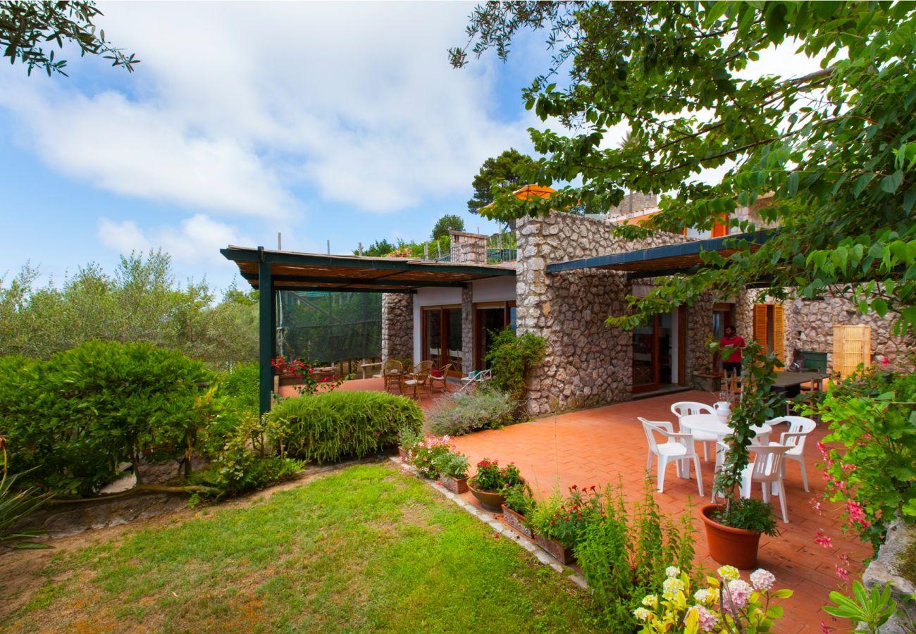 garden and patio, holiday villa sterlizia, massa lubrense, italy