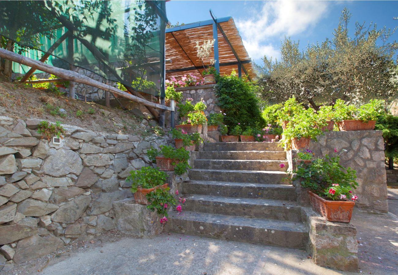 garden stairs, holiday villa sterlizia, massa lubrense, italy