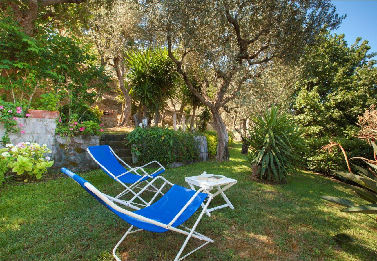 garden with two deckchair, holiday villa sterlizia, massa lubrense, italy
