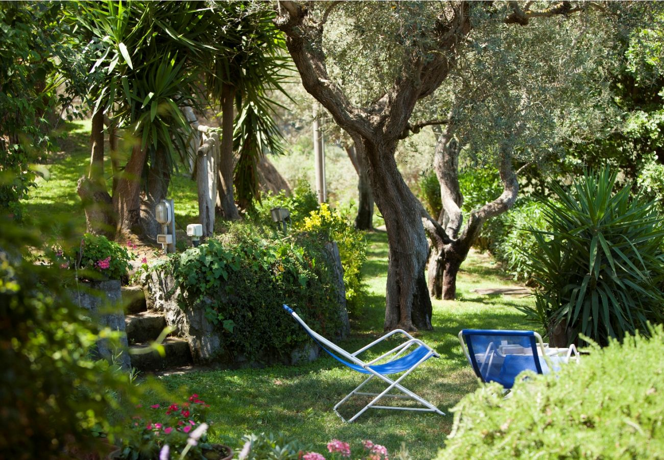 garden in the shade, holiday villa sterlizia, massa lubrense, italy
