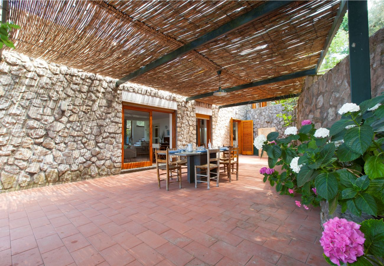 outside all'ombra patio with flowers, holiday villa sterlizia, massa lubrense, italy