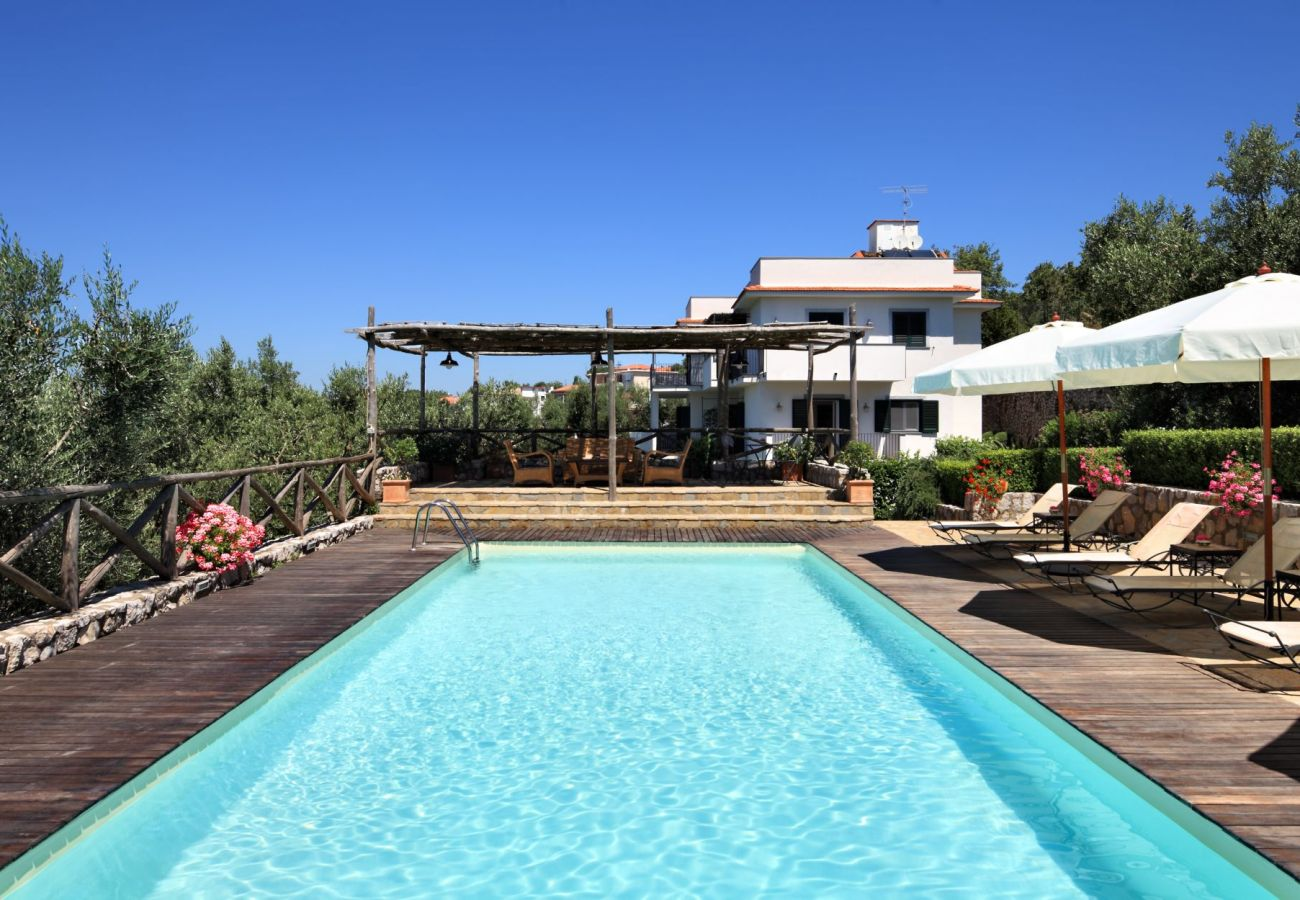 swimming pool in a sunny day, with furnished solarium, holiday apartment figaro, sant'agata sui due golfi, italy