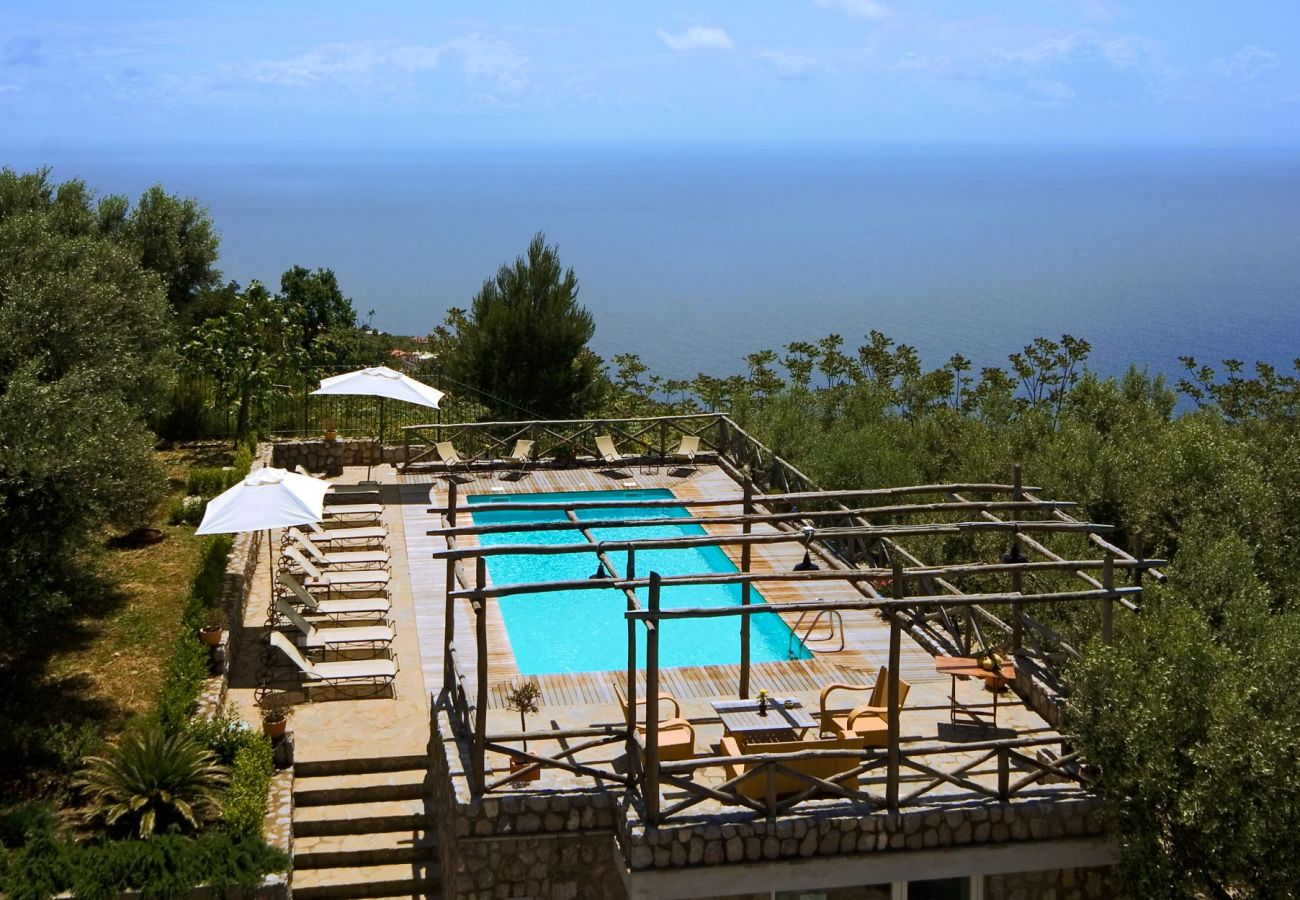 drone view of swimming pool, olives trees and sea, holiday apartment figaro, sant'agata sui due golfi, italy