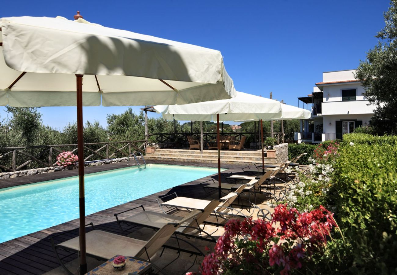 swimming pool and solarium with flowers, holiday apartment figaro, sant'agata sui due golfi, italy