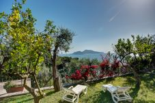 panoramic view overlooking capri island and sea from garden maison amelia