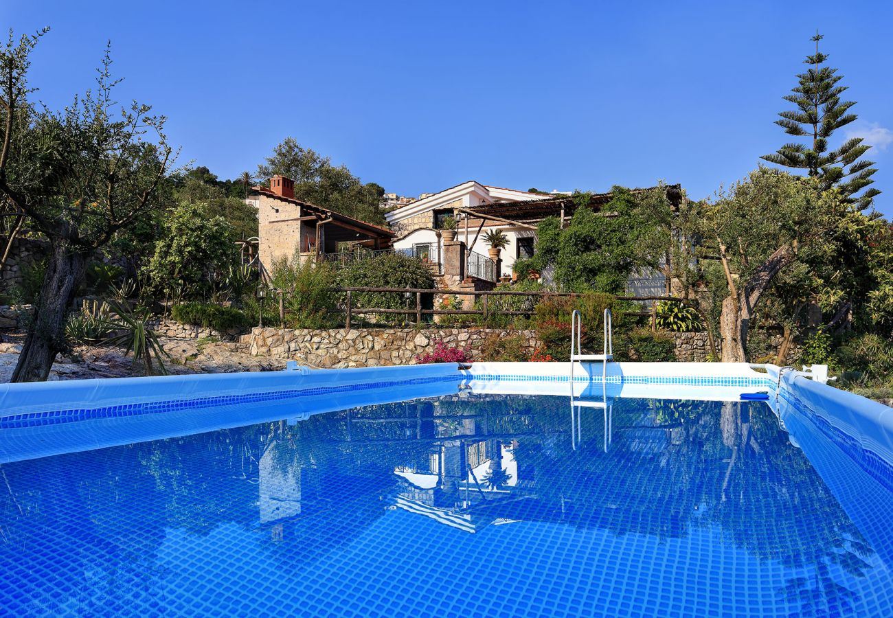 swimming pool immersed in a wide garden, villa le birbe