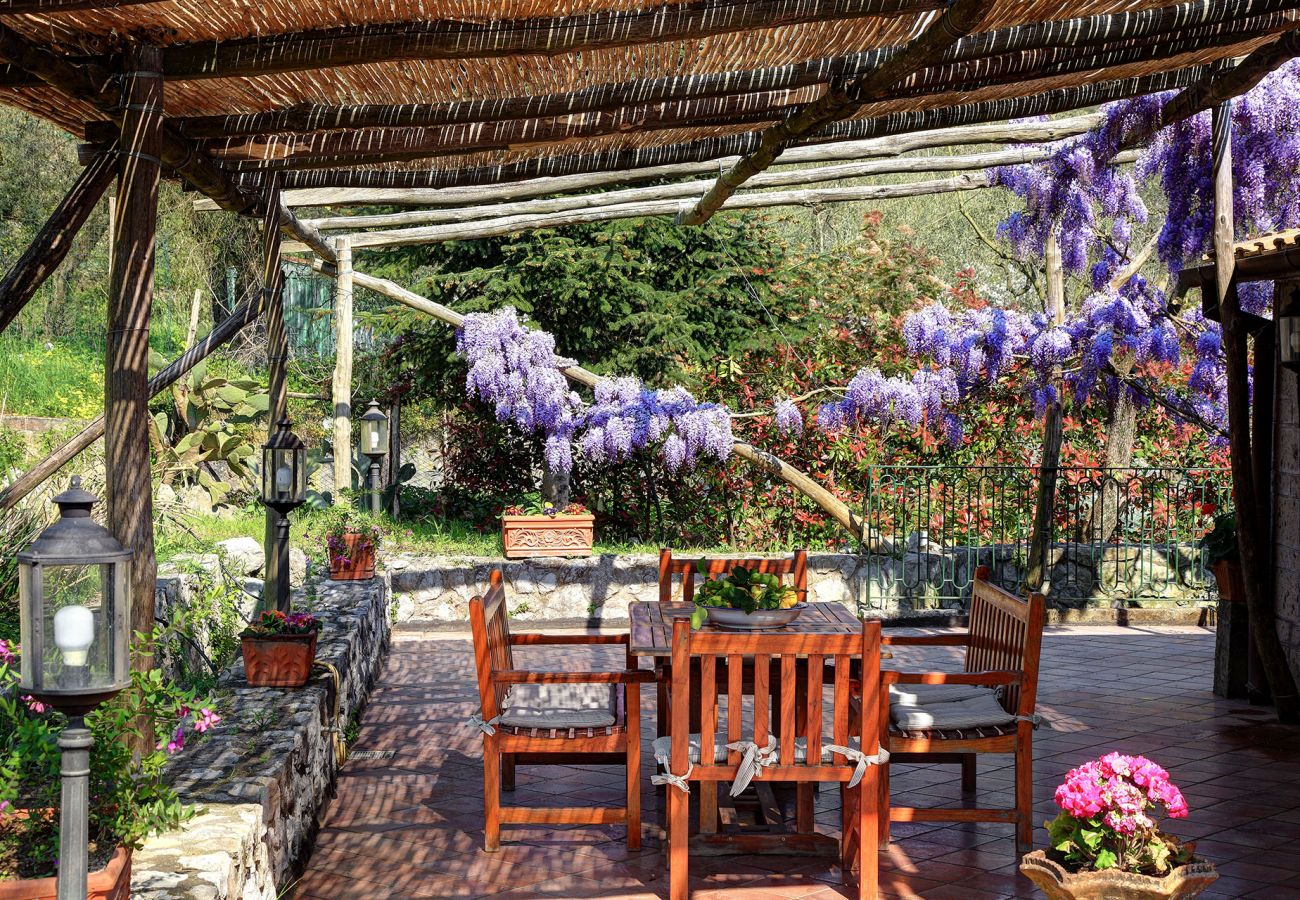 patio with glicine flowers, villa le birbe massa lubrense