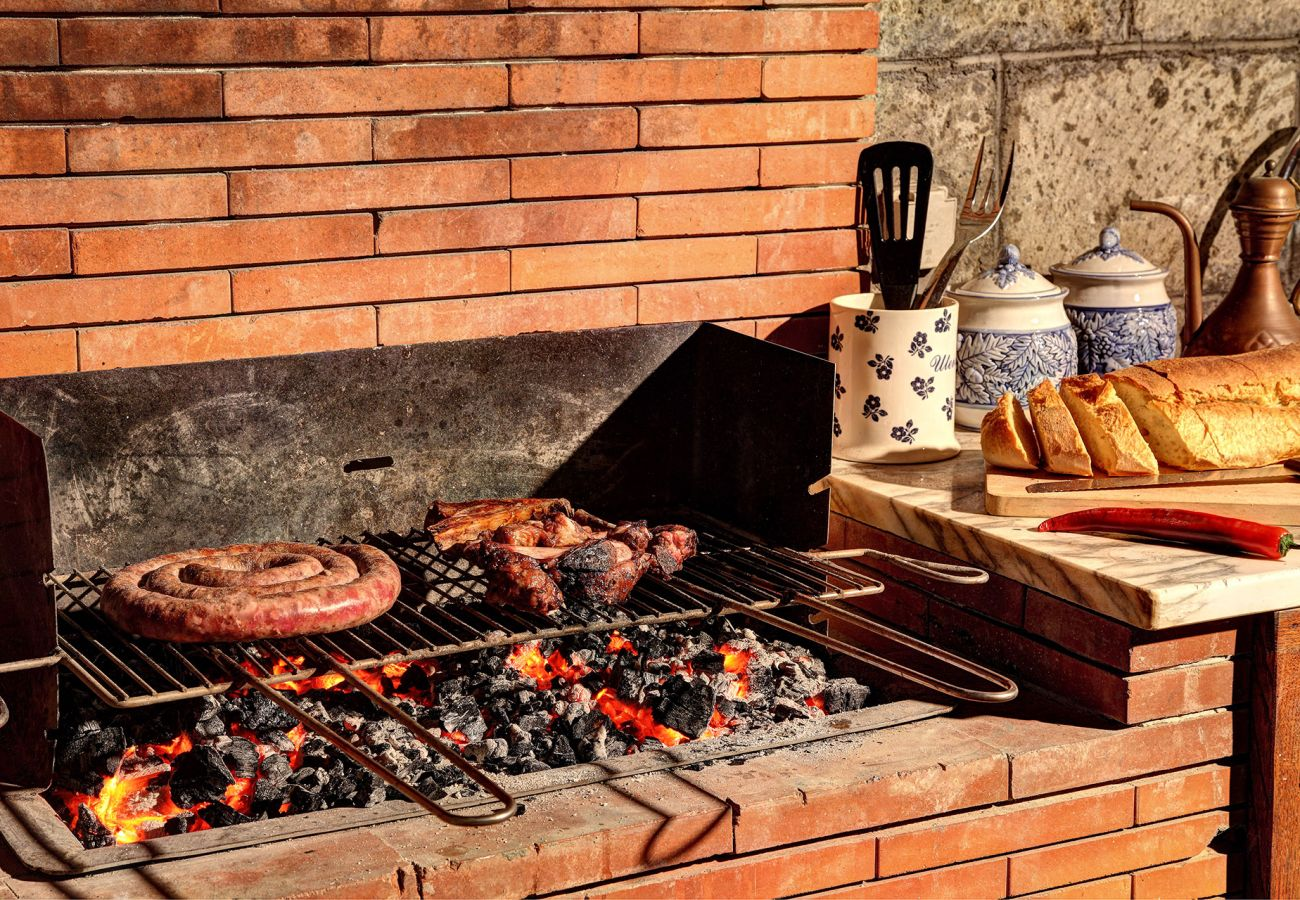 barbeque with meat, villa le birbe