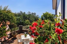 flowers from the terrace of villa le birbe